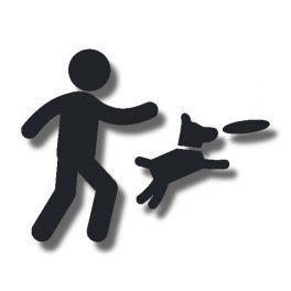 Agility- und Sportkurse in der Hundeschule Alltag mit Hund in Borken