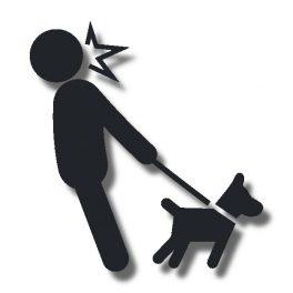 Junghundekurse in der Hundeschule Alltag mit Hund in Borken